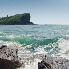 sml Lion island Pittwater